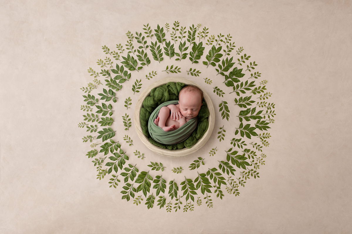 fresh green leaves newborn photo symmetry
