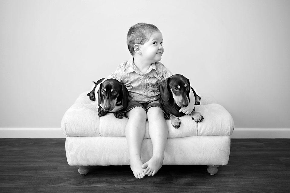Brisbane Pet Photography
