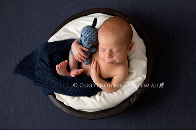 Newborn portraits brisbane