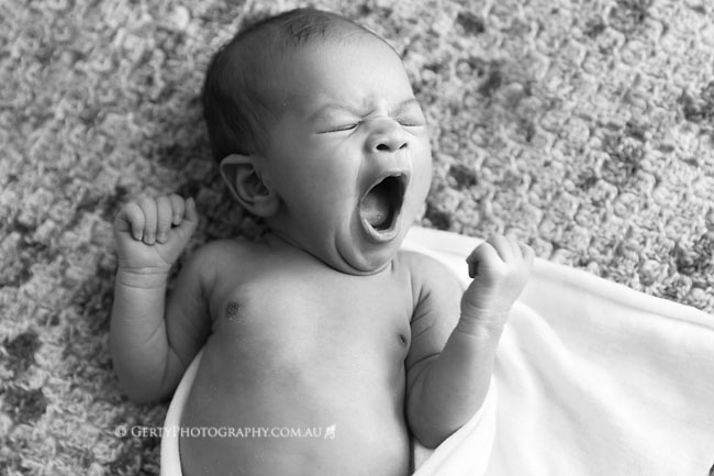 gorgeous newborn images
