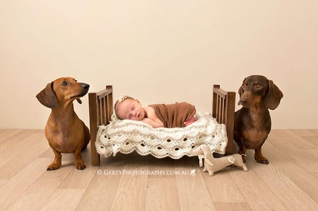 brisbane baby photos