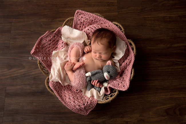 brisbane newborn photos pink cat