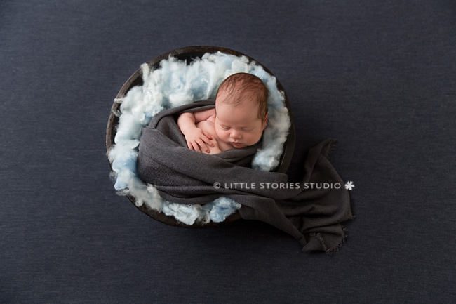 holland park newborn photographer