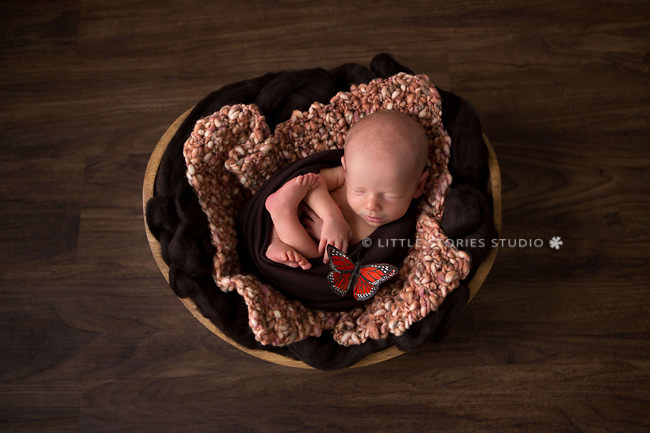 orange and brown newborn photos