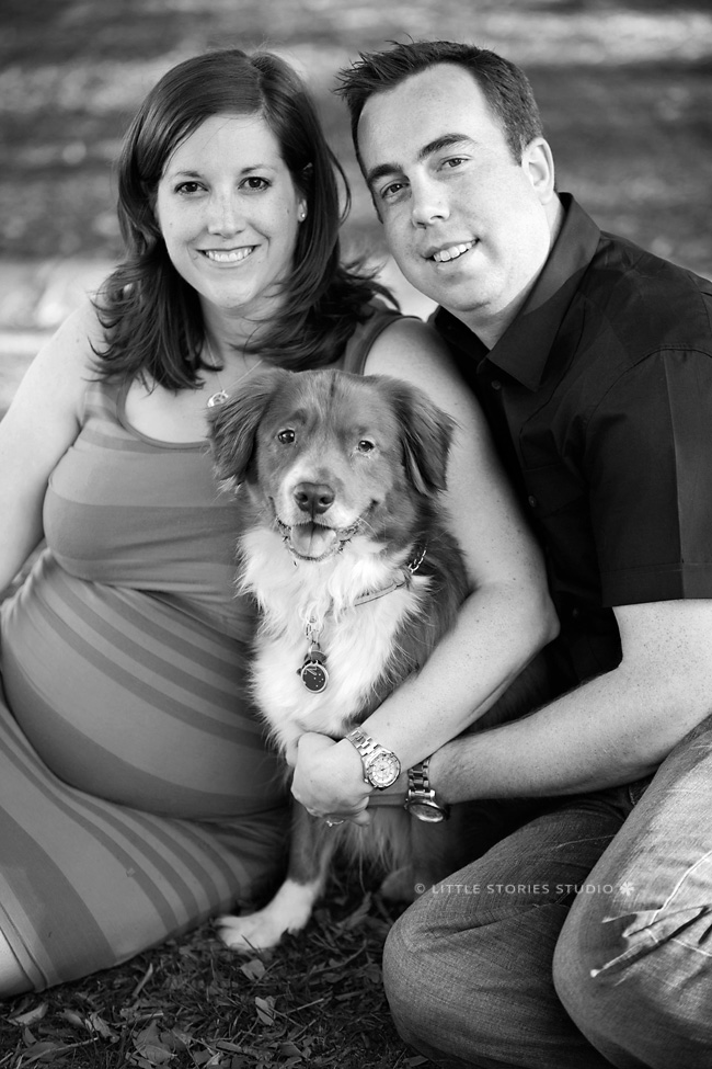 maternity photo with puppy