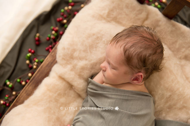 christmas baby newborn photos brisbane