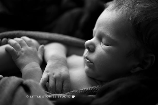 beautiful black and white newborn photography brisbane