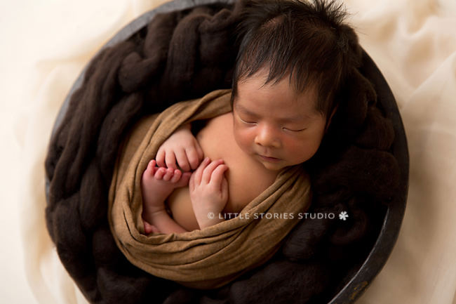 cream caramel and brown newborn photos