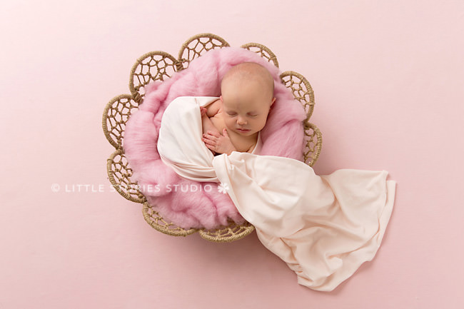pretty pink newborn baby girl photography brisbane