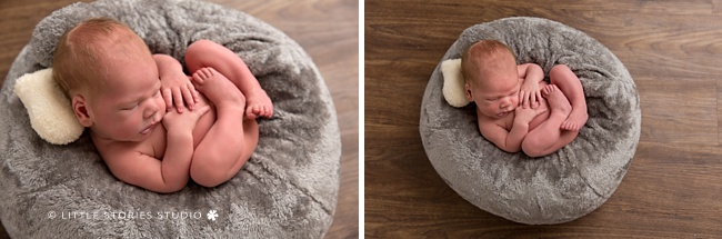perfect posie newborn photo