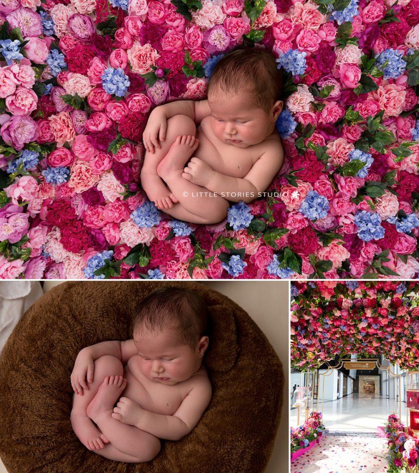 sinagpore flowers newborn photos digital backdrop