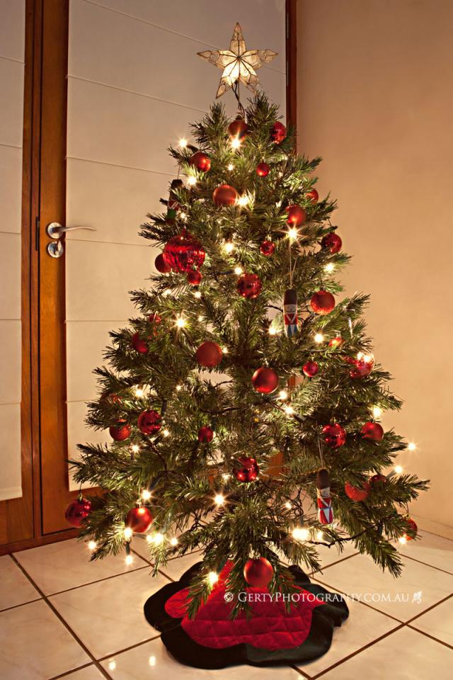 Tree_0011-640x960.jpg